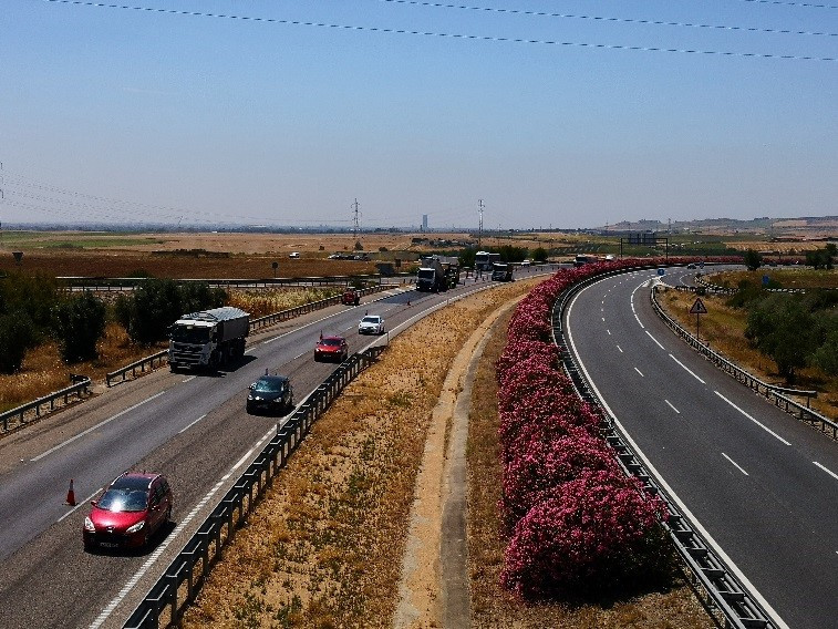 Conservation and Operation Service on the roads of sector 01 in the province of Seville